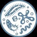 Działanie bakteriobójcze